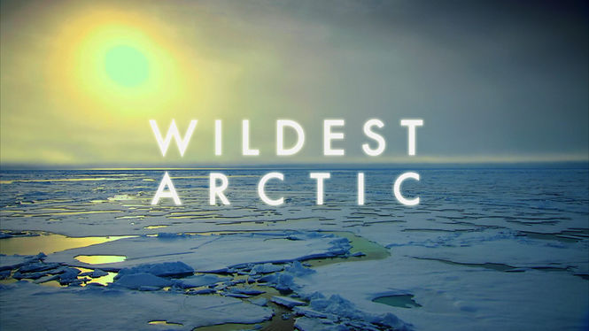 Netflix Box Art for Wildest Arctic - Season 1